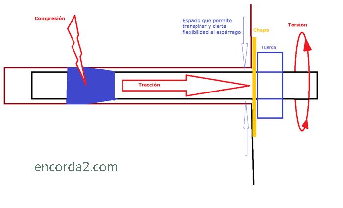 Dinamica del Parabolt